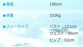 04_3サイズ+.jpg