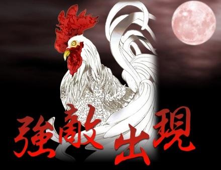 軍鶏の息子_純白.jpg