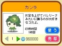 カンラ(売).jpg